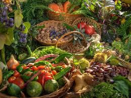 fruttabio Ziano di Fiemme, orto biologico ed erbe officinali: corso gratuito il sabato mattina