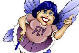 Picture of Flylady
