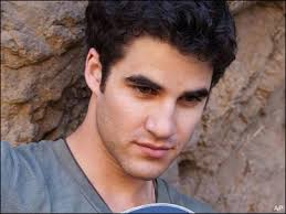 Glee guest star Darren Criss