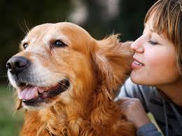 Íránský duchovní zakazuje lidem chovat psy, podle islámu jsou nečistí (TOPKY)
