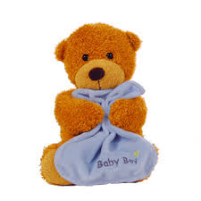 http://t2.gstatic.com/images?q=tbn:4D6SCor9cuiLIM:http://www.arenaflowers.com/product_image/large/2544-baby_boy_bear.jpg