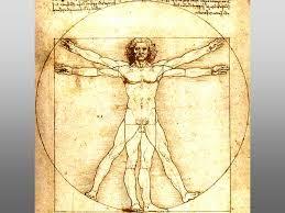 Da Vinci: Anatomia