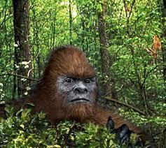 Bigfoot Hoax!