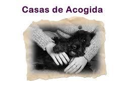 CASAS DE ACOGIDAS