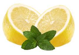 http://t2.gstatic.com/images?q=tbn:8FqqBHvwHlM-_M:http://www.fruite.fr/blog/wp-content/uploads/2009/05/citronnade2.jpg