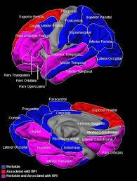 Apa research paper on bipolar disorder   American Psychological     apa research paper on bipolar disorder