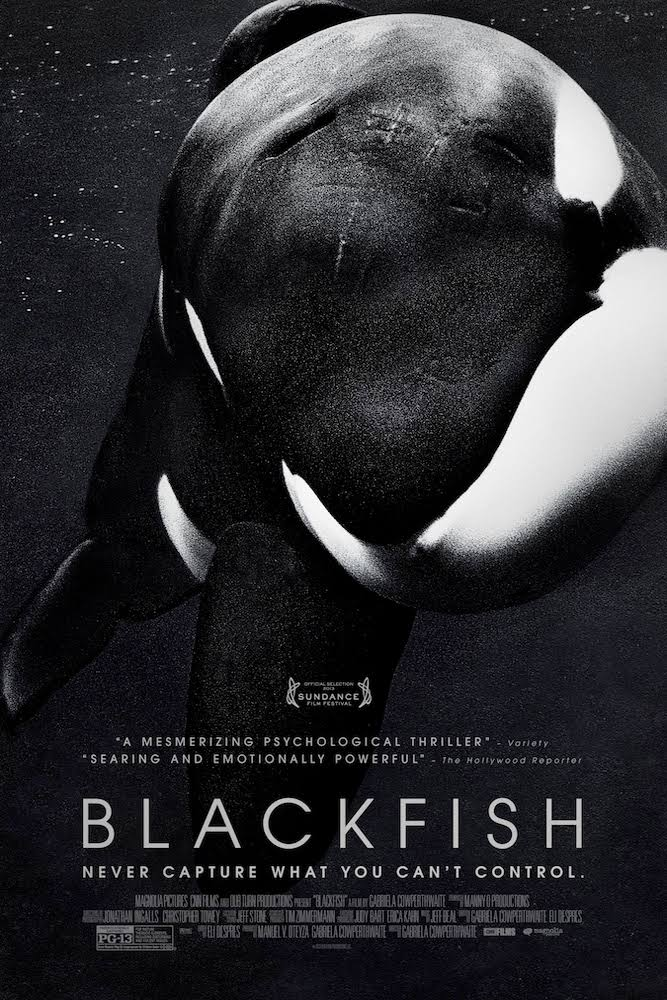 documentaries blackfish