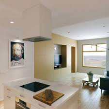 small apartment living room design ideas for small living room