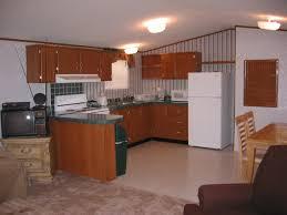 Kitchen Cabinets Inside Kitchen Cabinets For Mobile Homes Tehranway Decoration