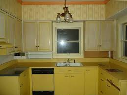 Reviews Ikea Kitchen Cabinets Remodelling Your Home Decor Diy With Cool Stunning Review Ikea