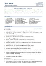 CIO Resume Example   Melbourne Resumes happytom co