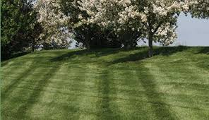 Fort Wayne Employment Opportunities at Leeper     s Lawn Service Inc     Fort Wayne Employment Opportunities at Leeper     s Lawn Service Inc   providing lawn care and landscaping services in Northern Indiana
