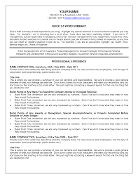 Summary Sample Resume by Examples Of A Good Resume 19 32 Best Resume Example Images On
