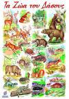Γνωρίζω τα ζώα - Mind Map