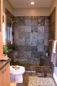 bathroom designs with walk in shower awesome design guest bathroom