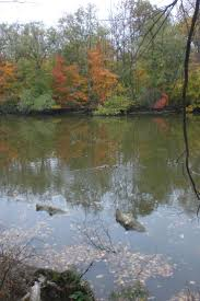 45 best fall in fort wayne images on pinterest indiana