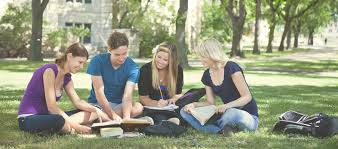 Struggling With Your Persuasive Essay Thesis Writing Essay Writing Guides