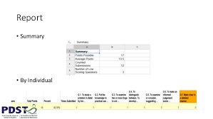 Report     Summary     By Individual