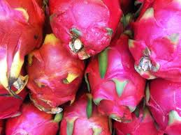 Buah Naga (Dragon Fruit)