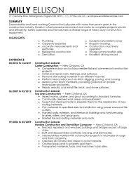 Award Winning CEO Sample Resume   CEO Resume Writer   Executive