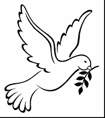 dove coloring page doves coloring pages free coloring pages line