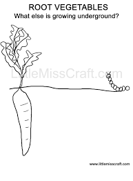 printable carrot vegetable coloring pages theme food group