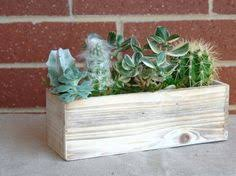 Shabby Chic Planters by Large White Shabby Chic Wood Box Woodland Succulent Planter Pot