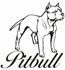 pitbull coloring pages 3585