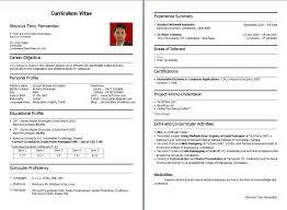 Best Resume Title by Resume Title For Fresher Free Resume Example And Writing Download
