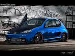 Peugeot 206: Description of the model, photo gallery ...