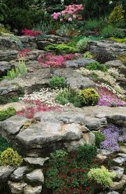 537 best rock garden ideas images on pinterest garden ideas