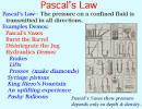 Pascal Bernoulli