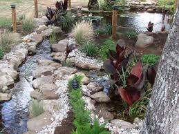 stream and bog for koi pond goproponds the pond doctor