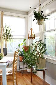 plant stand 35 unforgettable indoor hanging plant stand picture