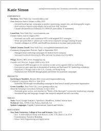 Sample Resume Objectives For Web Developer by Resume Google Analytics Resume For Your Job Application