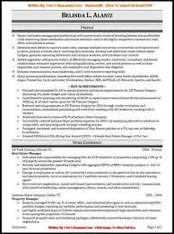 Resume  Resume Sample With Good Template In Ms Word Sample For IT Jobs With Relevant     Eps zp