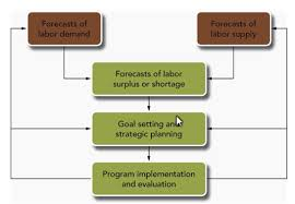 Overview of the human resource planning process