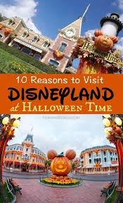 best 25 disneyland attendance ideas on pinterest disney secrets
