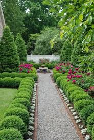 best 25 hedges ideas on pinterest hedge fence ideas hedges