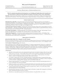 general resume summary examples resume examples general skills good resume summary examples resume summary examples good