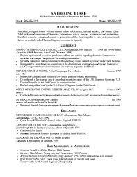 Resume help summary section   Nursing resume writing service