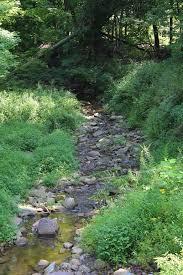 Martin Creek
