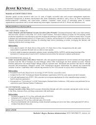Resume Summary Examples Customer Service by Executive Summary Resume Example Executive Summary Resume Example