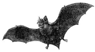 antique halloween background antique images free halloween graphic vintage vampire bat with