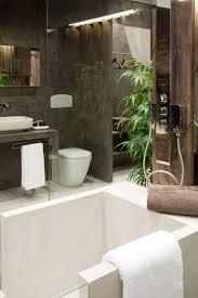 an exotic indoor garden surrounding a zen inspired bath designrulz vuelta a empezar designrulz 9