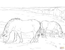 two ponies grazing coloring page free printable coloring pages