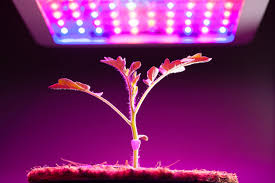 best led grow lights reviews for 2017 by experts in growing