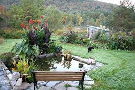 beautiful garden ideas home design ideas and architecture with
