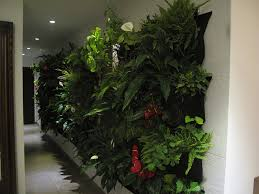 Outdoor Wall Planters by Amazon Com Living Wall Planter Indoor Outdoor Use W Reservoir