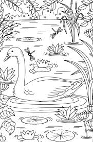 501 best coloring books images on pinterest coloring books